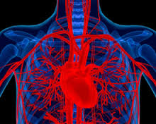 อาหารเฉพาะโรคหัวใจ